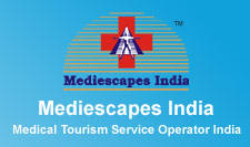 Mediescapes Logo